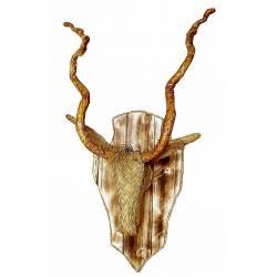 Trofeo cabeza carnero esparto