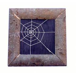 Cuadro de tela de araña cuadrado