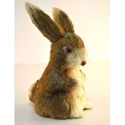 Conejo pajón