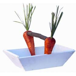 Cesta con zanahorias