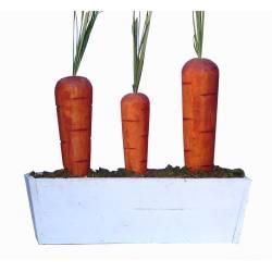 Jardinera con zanahorias