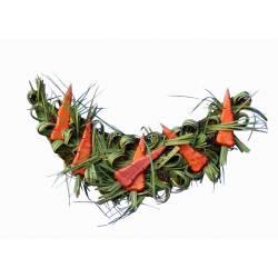 Guirnalda de zanahorias