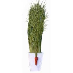 Centro de esparto con zanahoria