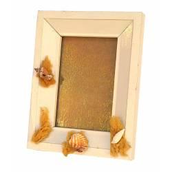 Portafotos de conchas y esponjas