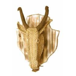Trofeo cabeza cabra esparto