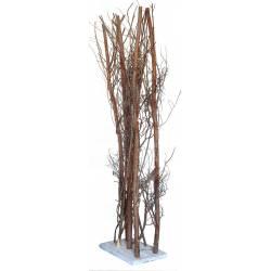 Seto ramas grises