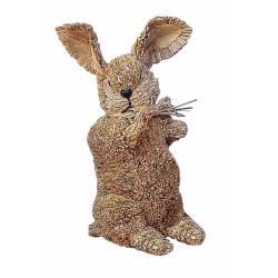 Conejo pequeño con traje