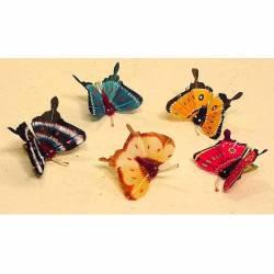 Mariposa con pinza