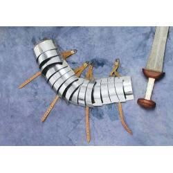 1016385103 Lorica segmentada brazo