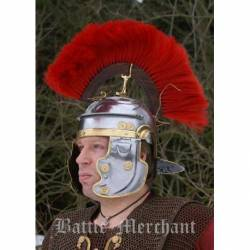 1716610601 Soporte para cresta romana (varios tipos)