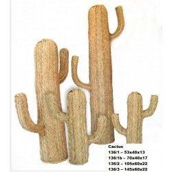 Cactus esparto