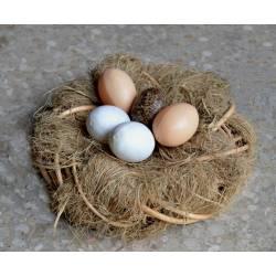 Nido de esparto con huevos
