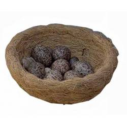 Bolsa de 20 huevos de codorniz grandes
