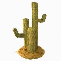Centro cactus esparto